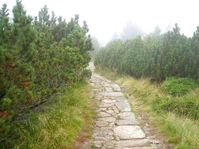 Wanderung durch Riesengebirge. Edyta Guhl.