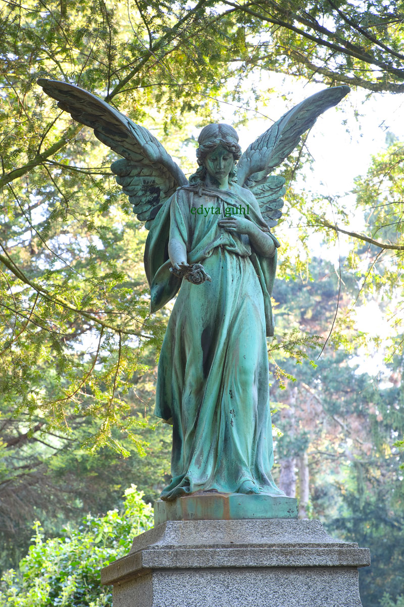 Wunderschöne Engel von Melaten. Edyta Guhl.