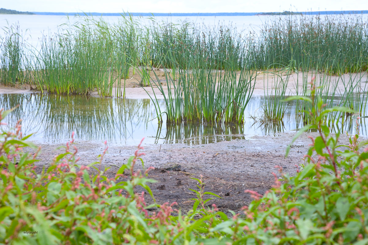 Strand-in-Yyteri-in-Finnland
