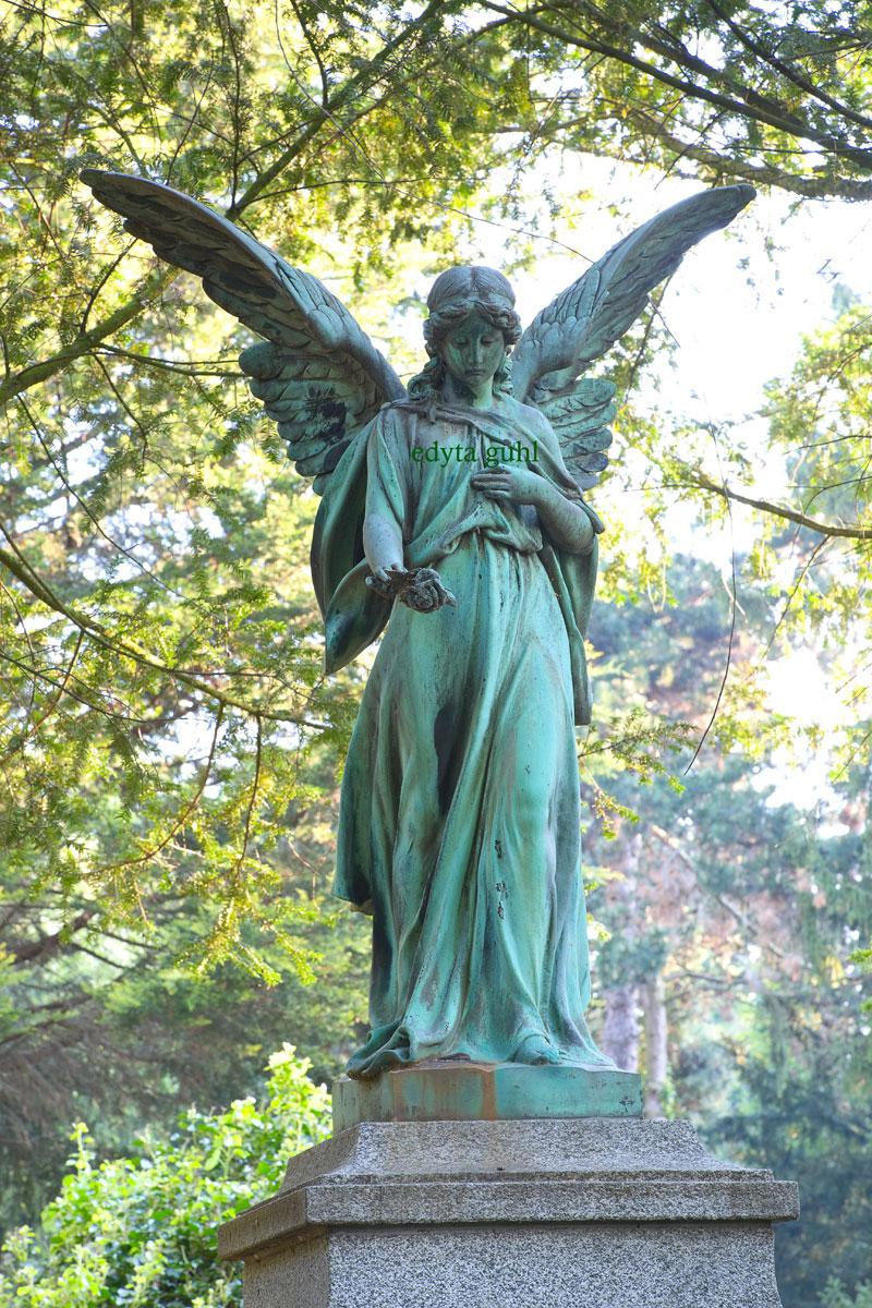 wunderschoene-engel-von-melaten