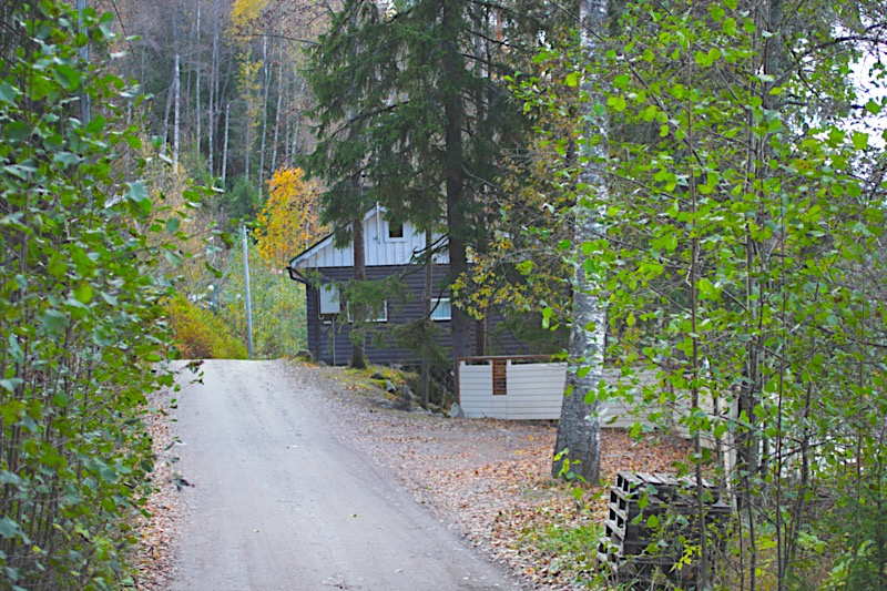 finnland-spaziergang-am-see
